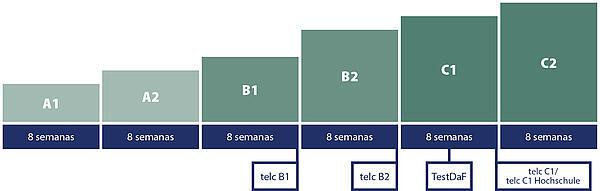 Carl Duisberg Sistema de cursos: Duración promedio de los niveles